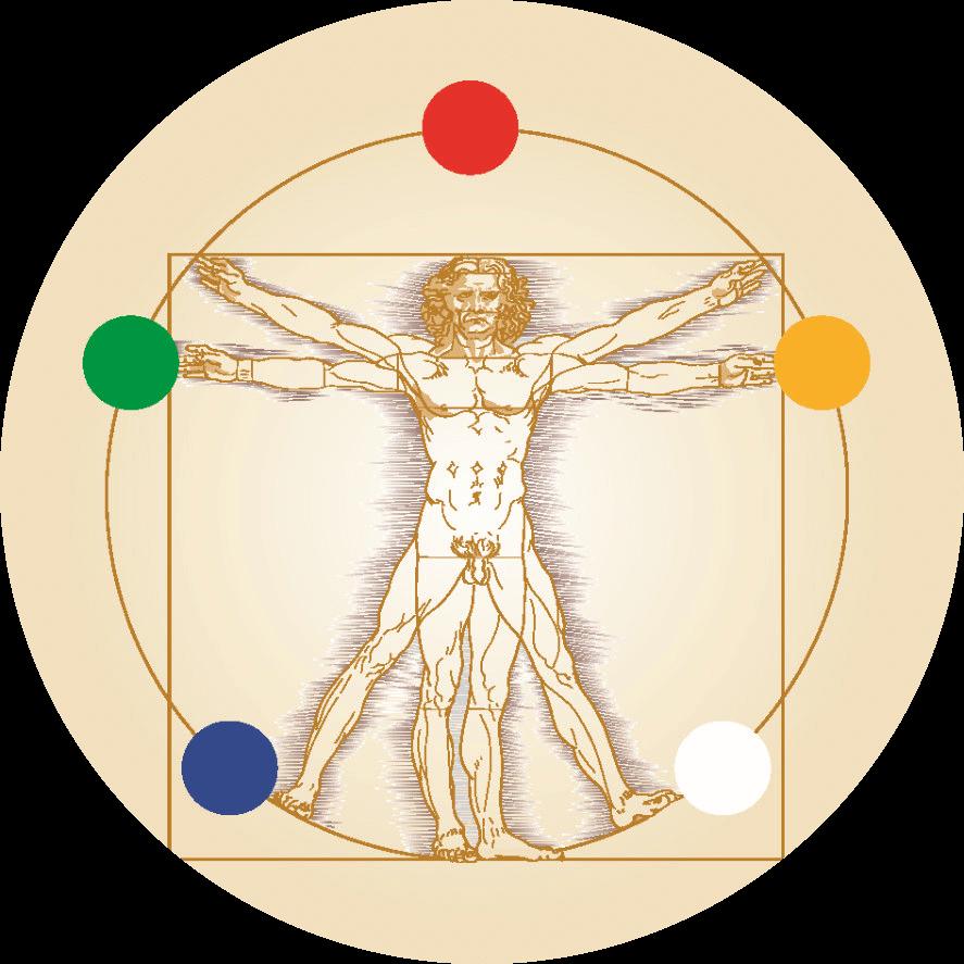 Logo Dr. Olaf Kron - Ganzheitliches Coaching